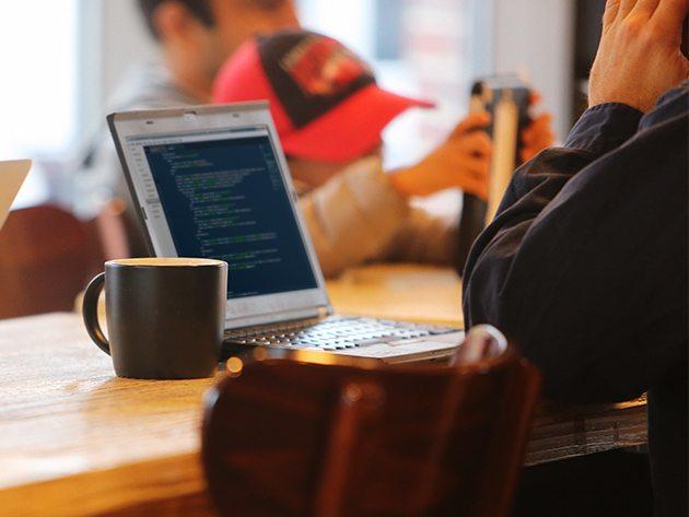 Newbie-to-Pro Web Developer Course