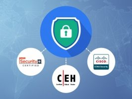IT Security & Ethical Hacking Bundle