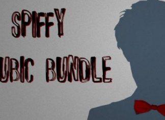 Spiffy Cubic Bundle