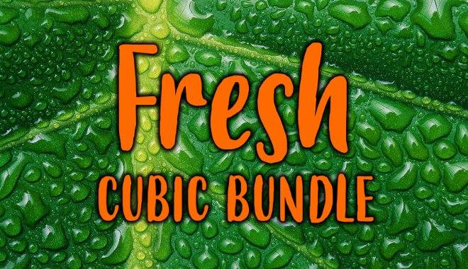 Fresh Cubic Bundle