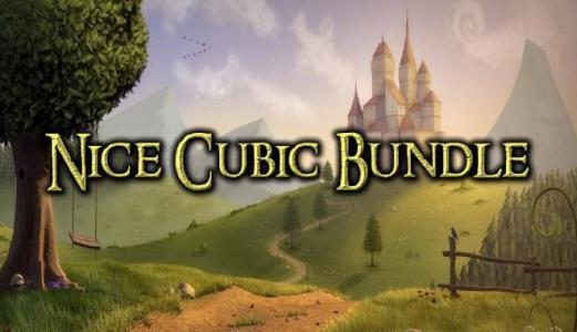 Nice Cubic Bundle