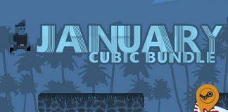 January Cubic Bundle