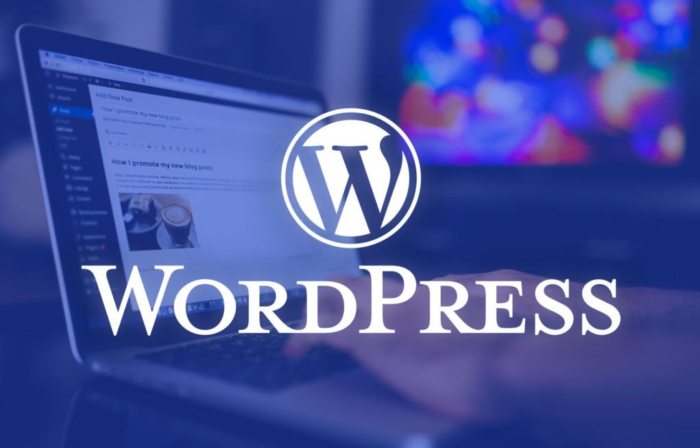 The 2021 WordPress Wizard Bundle