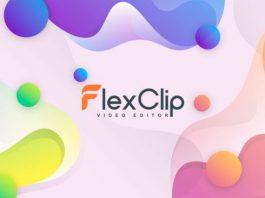 FlexClip Basic: Lifetime Subscription